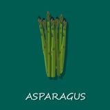 Mazzo di asparago, illustrazione di vettore, insegna, modello Immagini Stock Libere da Diritti