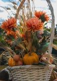 Mazzo di autunno con il fiore e le zucche fotografia stock