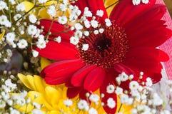 Mazzo di autunno dei fiori Fotografie Stock