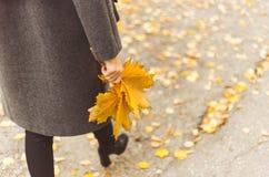 Mazzo di autunno delle foglie gialle in mani di una signora immagini stock
