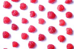 Mazzo di bacche organiche fresche del lampone nel modello senza cuciture dell'ornamento, fondo bianco Concetto pulito di cibo Nut Immagini Stock
