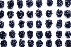 Mazzo di bacche organiche fresche del mirtillo nel modello senza cuciture su fondo bianco Concetto pulito di cibo Vegano nutrient fotografia stock libera da diritti