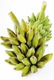 Mazzo di banana Immagini Stock