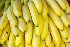 Mazzo di banane Fotografie Stock Libere da Diritti
