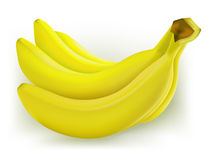 Mazzo di banane illustrazione vettoriale