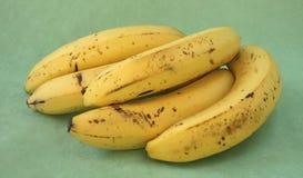 Mazzo di banane dalla parte posteriore. Fotografia Stock