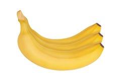 Mazzo di banane isolate su priorità bassa bianca Fotografie Stock Libere da Diritti