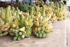 Mazzo di banane mature nel mercato Immagine Stock Libera da Diritti