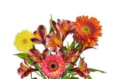 Mazzo di bei fiori arancio e gialli isolati su bianco Immagine Stock Libera da Diritti