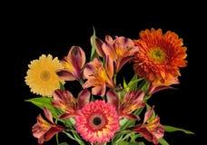 Mazzo di bei fiori arancio e gialli isolati sul nero Immagine Stock Libera da Diritti