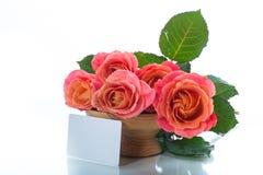 Mazzo di belle rose rosa isolate su bianco immagine stock libera da diritti