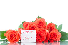 Mazzo di belle rose rosse Fotografia Stock Libera da Diritti