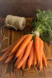 Mazzo di carote fresche, raccolto di estate fotografie stock libere da diritti