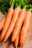 Mazzo di carote naturali Fotografia Stock Libera da Diritti