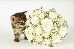 Mazzo di cerimonia nuziale e un gatto sveglio. fotografia stock libera da diritti