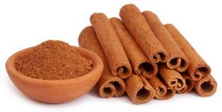 Mazzo di certa cannella aromatica fresca con la spezia della polvere Immagine Stock