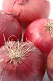 Mazzo di cipolle rosse Fotografia Stock Libera da Diritti