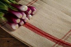 Mazzo di cipolle sulla tovaglia fotografia stock