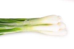 Mazzo di cipolle verdi Immagini Stock