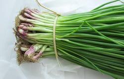 Mazzo di cipolle verdi con la erba cipollina Macro Immagini Stock Libere da Diritti