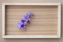 Mazzo di fiore della vite della carta vetrata sul fondo della struttura di legno, vista superiore Fotografia Stock Libera da Diritti