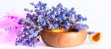 Mazzo di fiori della lavanda su fondo bianco immagini stock