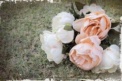 Mazzo di fiori della peonia su erba Immagine Stock