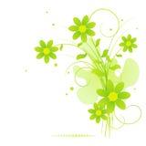 Mazzo di fiori di estate. Immagine Stock Libera da Diritti