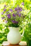 Mazzo di fiori di estate Fotografia Stock