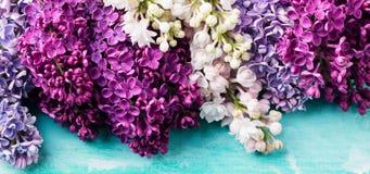 Mazzo di fiori lilla su un fondo del turchese Vista superiore Copi lo spazio Fotografia Stock