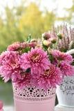 Mazzo di fiori rosa del crisantemo fotografia stock libera da diritti