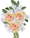 Mazzo di fiori rosa lilla leggeri dell'arancia e dell'orchidea Fotografia Stock