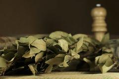 Mazzo di fogli secchi della baia Fotografie Stock