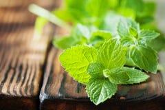Mazzo di foglia organica verde fresca della menta Fotografie Stock