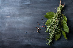 Mazzo di foglie fresche dell'alloro e dei rosmarini Fotografie Stock