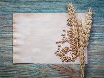 Mazzo di foglio di carta dei grani delle orecchie della segale del grano d'annata su legno BO Fotografie Stock Libere da Diritti