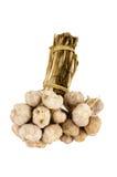 Mazzo di garlics Fotografie Stock Libere da Diritti