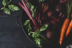 Mazzo di giovani cipolle verdi, barbabietole, carote e basilico su un fondo nero di vecchia annata dei bordi di legno, verdura fr fotografie stock libere da diritti