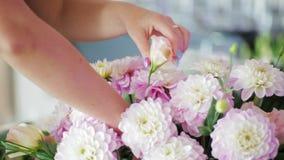 Mazzo di Hands Making Beautiful del fiorista dei fiori rosa per la decorazione di nozze video d archivio