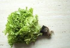 Mazzo di insalata verde organica cruda di frisee con le radici immagini stock