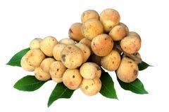 Mazzo di lanzones o frutta dolce e foglie di Longong isolati su fondo bianco Fotografia Stock Libera da Diritti