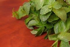 Mazzo di menta verde fresca Immagine Stock