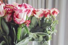 Mazzo di molte rose Mazzo di molte rose Immagine Stock