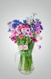 Mazzo di molti bei di fiori colorati multi dei fiordalisi Immagini Stock Libere da Diritti