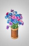 Mazzo di molti bei di fiori colorati multi dei fiordalisi Fotografia Stock