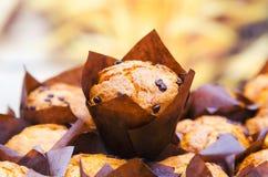 Mazzo di muffin con il fuoco selettivo ed il fondo vago Fotografie Stock Libere da Diritti
