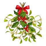 Mazzo di Natale vischio e dell'agrifoglio Immagine Stock Libera da Diritti
