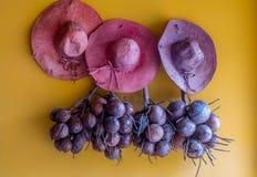 Mazzo di noce di cocco e di capi Fotografia Stock