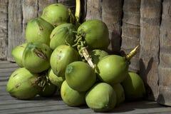 Mazzo di noci di cocco Immagine Stock