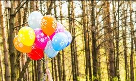 Mazzo di palloni colorati del partito Fotografia Stock Libera da Diritti